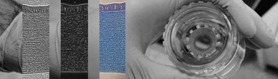 header-IF-Banque-de-tissus-oculaires
